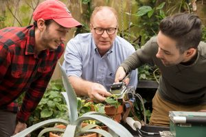 Graduate students and professor James Leebens-Mack use a carbon dioxide sensor on a plant in the horticulture greenhouses.
