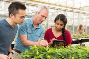Professor Scott Jackson works with students in a greenhouse.
